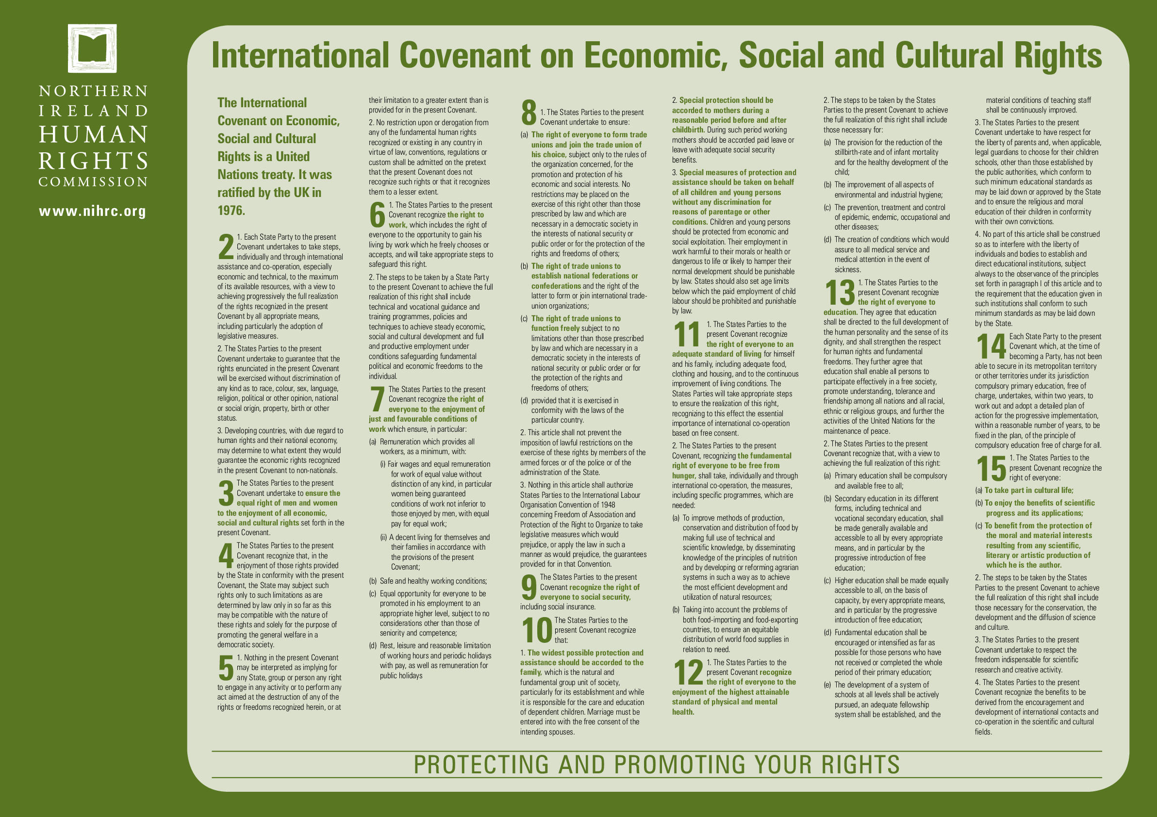 International Covenant on Economic, Social and Cultural Rights (ICESCR) Poster - resource 1