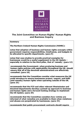 The Joint Committee on Human Rights' Human Rights and Business Inquiry