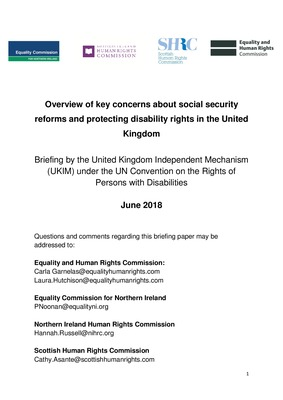 UK Independent Mechanism: Overview of key concerns